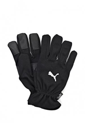 Перчатки PUMA Winter Players. Цвет: черный