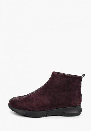 Ботинки Covani. Цвет: бордовый